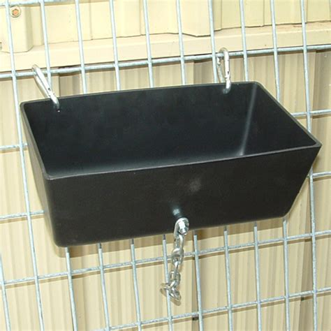 Clip On Pig Feeders show pig glog publish with glogster