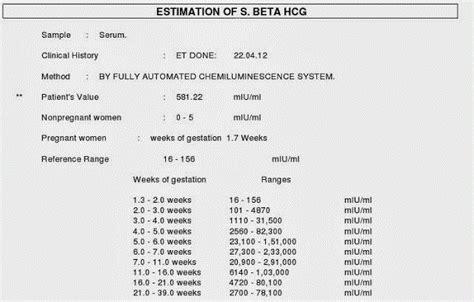 test beta hcg valores de hcg en el embarazo oo reproducci 243 n asistida
