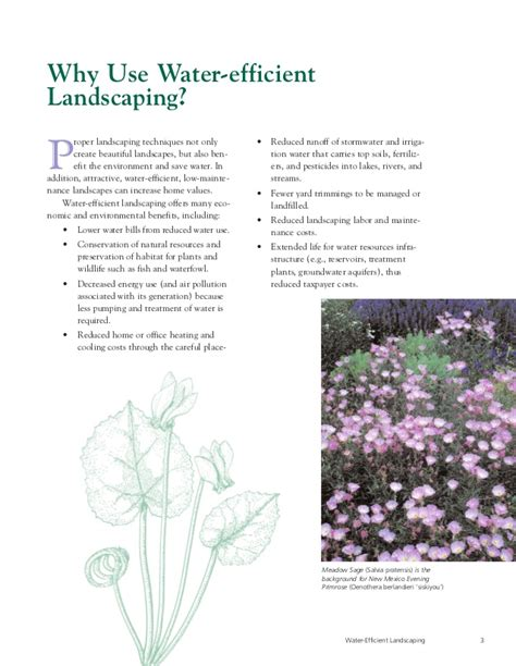 water efficient landscaping preventing pollution and