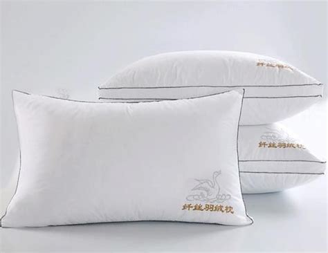 Where Can I Buy Feather Pillows by Pillow Washable Velvet Feather Pillows Velvet Feather