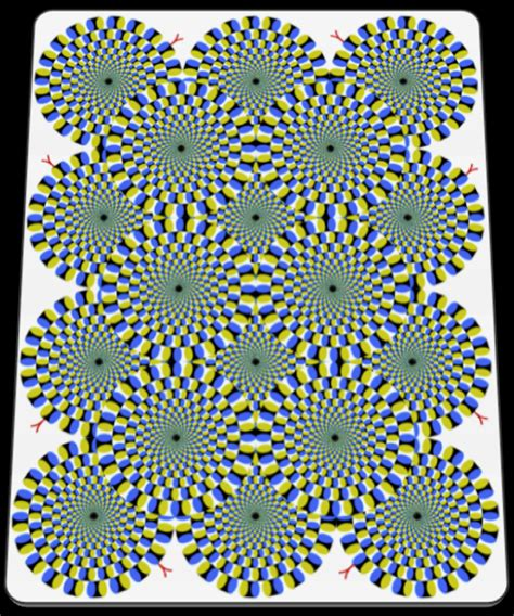 L Illusion by M 226 Y 226 L Illusion 187 Zone 7 Net
