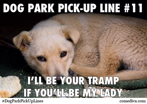 puppy up lines park up lines comediva
