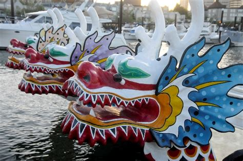 dragon boat racing information dragon boat racing is harder than you think daily
