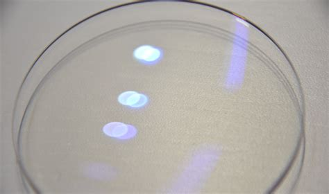 lenses that filter out blue light how to test if eyeglass lenses filter out blue light quora
