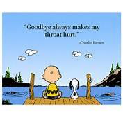 Few Weeks Ago I Had To Say Goodbye My Nearest And Dearest In