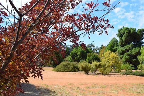 Australian Inland Botanic Gardens Australian Inland Botanic Gardens Melbourne