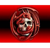 Download Scary Skulls Wallpaper Skull With Dragon