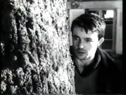 gerard blain biographie g 233 rard blain films filmographie biographie photos