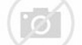 ... gambar animasi kartun bergerak naruto di bawah ini gambar animasi