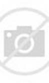 Adat Pakaian Melayu Riau