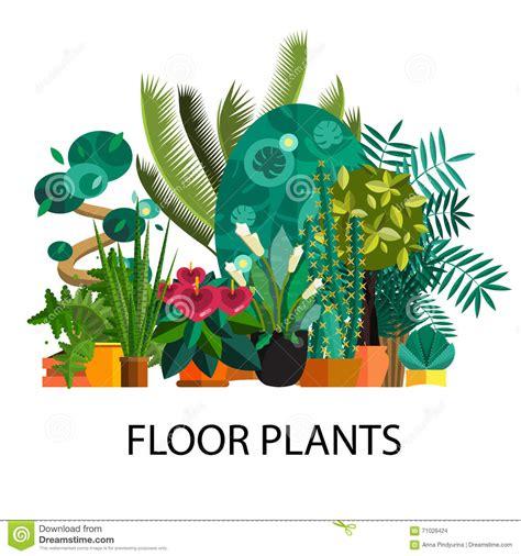 Furniture Stores In Kitchener Waterloo Ontario 100 indoor plants stock vector art 7 520 indoor