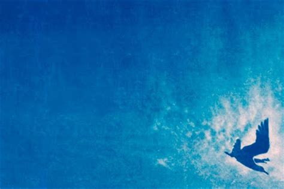 rebecca harbaugh alternative photography: cloth cyanotype book