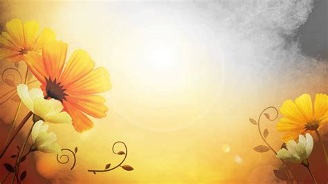 hd photography wallpaper video background hd flower hd style proshow