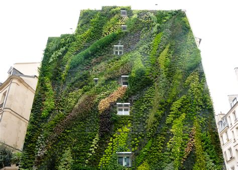 Vertical Gardens This Hanging Garden Will Your Mind Environmental