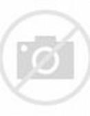 Gambar kartun binatang lucu terbaru ayam kuat