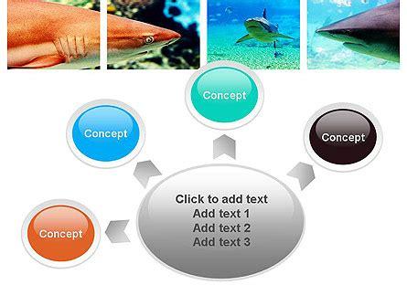 shark powerpoint template sharks powerpoint template backgrounds 10964