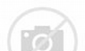 Photos of Quarter Sawn Honey Locust Lumber