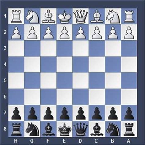 the new dealer chess the beginner s guide