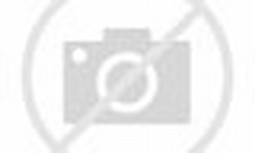 Taman bunga di pinggir telaga dengan jalan setapak.