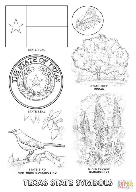 texas state symbols coloring page free printable