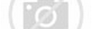 4 Out of 5 Stars Rating