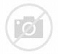Facebook Jamil Islam