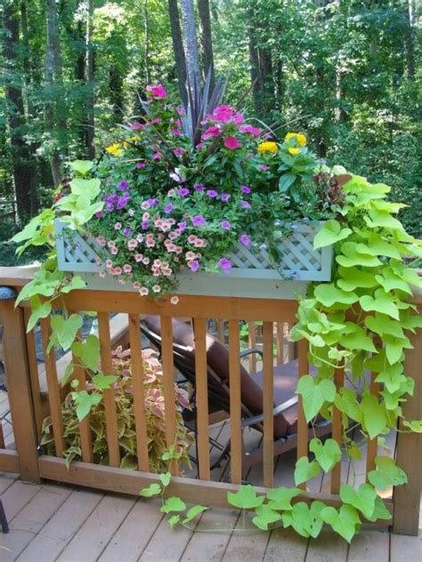 deck railing planter boxes 25 best ideas about deck railing planters on