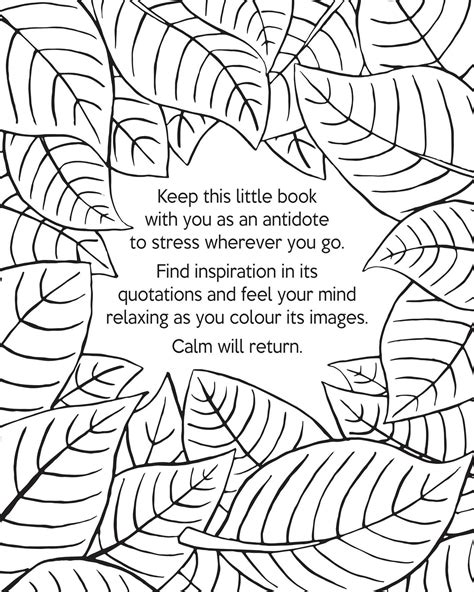 calming coloring pages the book of calm coloring book by david sinden