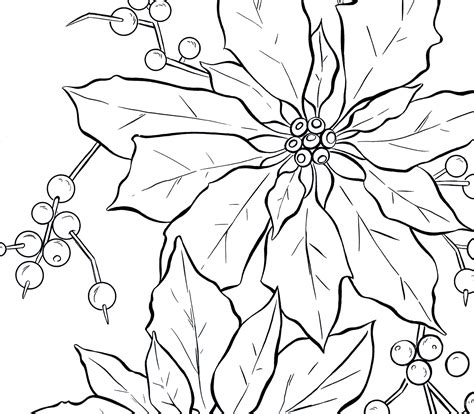 Printable Poinsettia Coloring Pages Coloring Me Poinsettia Coloring Page
