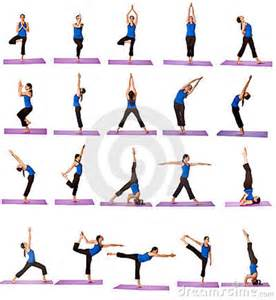 Easy yoga moves for beginners basic poses apps directories
