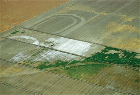 severe salinization of fields in california