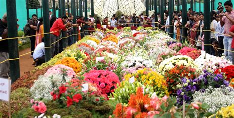 flower shoe lalbagh flower show 2011 images worthview