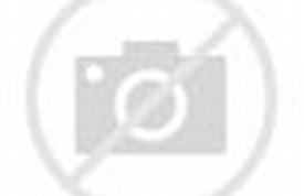 Funny Train