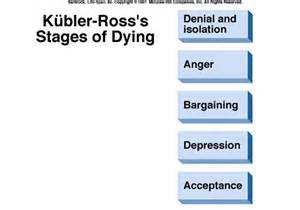 Fuzzy science stages of dying stages of grief