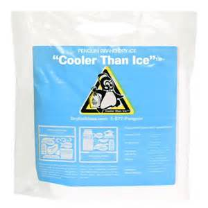 Penguin brand dry ice walmart com