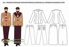 Model Pakaian Pramuka Penegak Pandega Putri Terbaru   Pramuka