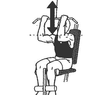 exercice sur banc de musculation traction en musculation programme d apprentissage