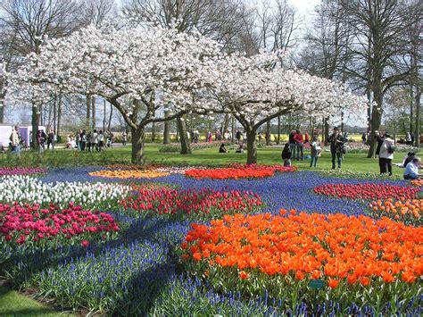 Netherlands Flower Garden Keukenhof El Parque De Los Tulipanes Multicolores Netherlands And Gardens