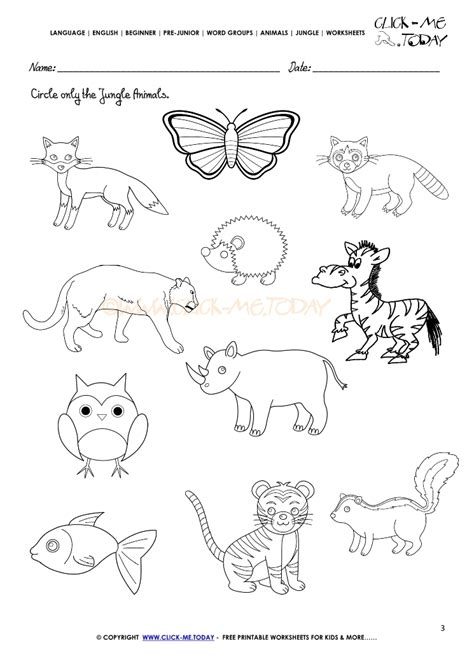 jungle animals worksheet activity sheet circle 3