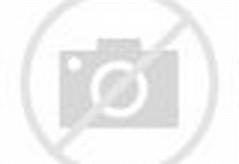 Drag Racing Car Engine