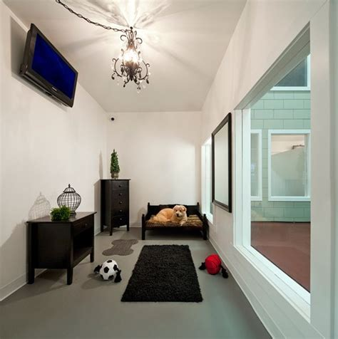 puppy hotel jet pet resort the ultimate pet friendly hotel at affordable cost friendly