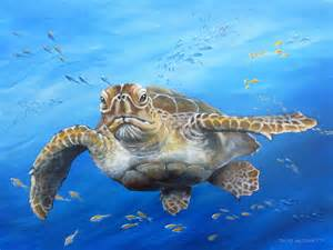 turtles painting sea turtle painting by david alfonsetti