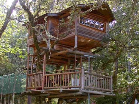 treehouse vacations branch out trees caves and vacations