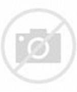 Beautiful Colorful Flower Garden