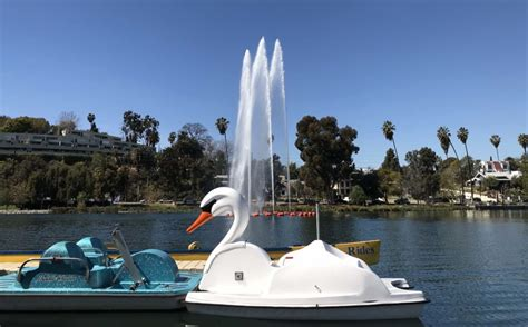 swan pedal boat you can now ride swan boats at echo park lake