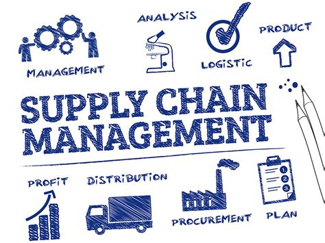 supply chain management dissertation guidelines for preparing a term paper