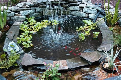 fish pond in backyard small backyard fish pond ideas pond garden pond