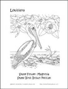 Louisiana State Bird And Flower - louisiana printables louisiana state bird and flower