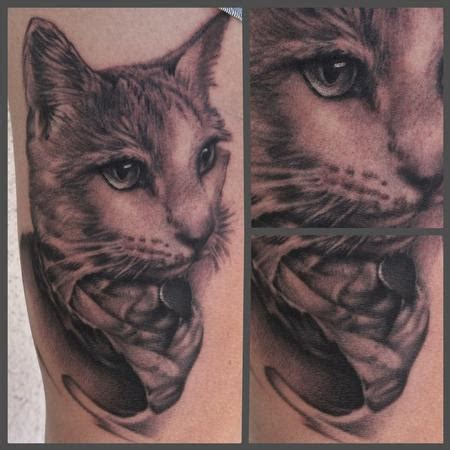 cat tattoo black and grey art junkies tattoo studio tattoos ryan mullins black