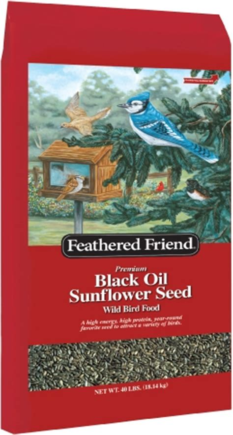 feathered friend black oil sunflower 40lb myagway